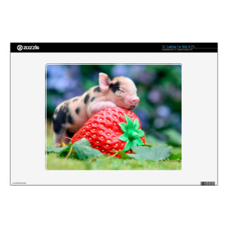 strawberry pig decal for laptop