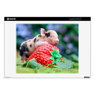"strawberry pig skins for 14"" laptops"