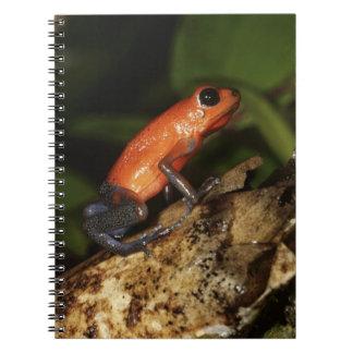 Strawberry Poison-dart frog (Dendrobates 2 Spiral Notebook