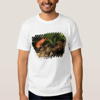Strawberry Poison-dart frog (Dendrobates 2 T-Shirt