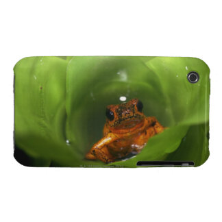 Strawberry poison frog hiding in leaves iPhone 3 cover