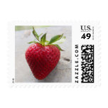 Strawberry Postage Stamp