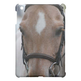 Strawberry Roan Horse  iPad Case