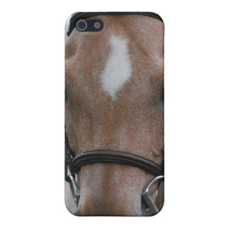 Strawberry Roan Horse iPhone 4 Case