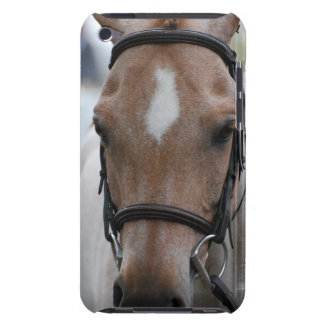 Strawberry Roan Horse iTouch Case Barely There iPod Covers