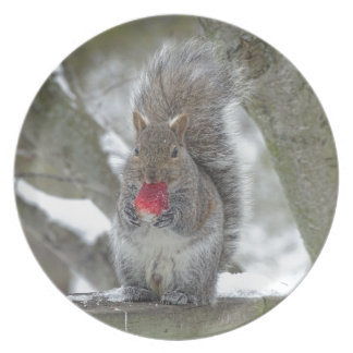 Strawberry squirrel plate