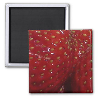 Strawberry Themed 2 Inch Square Magnet