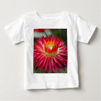 Strawflower (Xerochrysum bracteatum) Baby T-Shirt