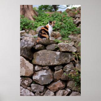 Stray Cat at Nakijin Castle Poster