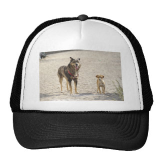 Stray Dog with puppy Trucker Hat