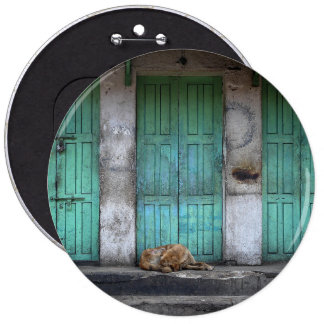 Stray dogs in front of dirty green doors 6 inch round button