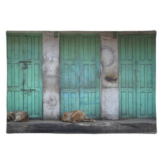Stray dogs in front of dirty green doors placemat