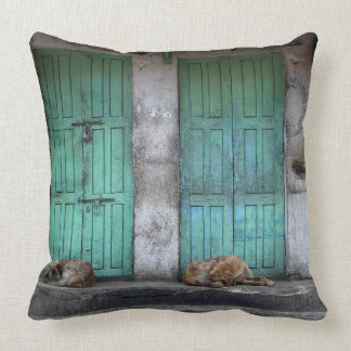 Stray dogs in front of green doors throw pillow