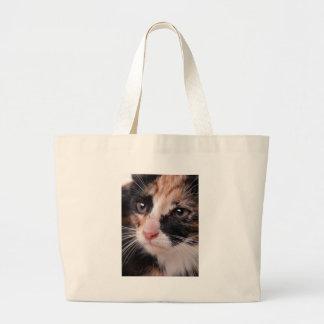 Stray Kitten Canvas Bag