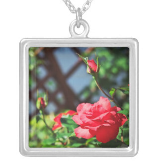 Stray Rose macro photography flower shoot Square Pendant Necklace