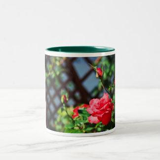 Stray Rose macro photography flower shoot Two-Tone Coffee Mug