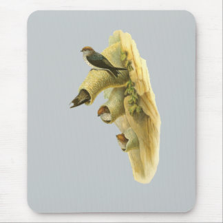 Streak-throated Swallow Mouse Pad