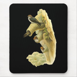Streaked-throated Swallow Mouse Pad