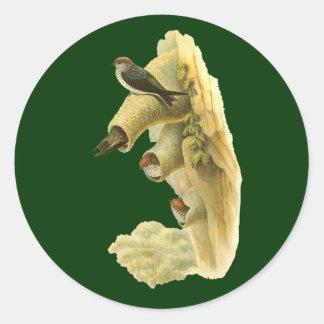Streaked-throated Swallow Round Sticker