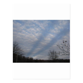 Streaks in the Clouds on a Fall Day Postcard
