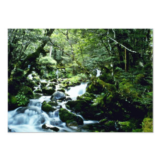 Stream And Forest, Nelson Lakes National Park, Sou 5x7 Paper Invitation Card