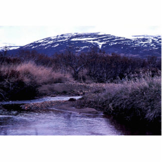 Stream and Mountain Landscape Cut Out