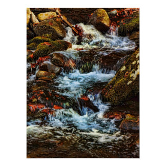 Stream and Rocks Posters