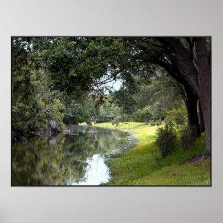 Stream at Sawgrass Park Print