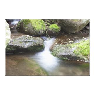 Stream Falls Canvas Print