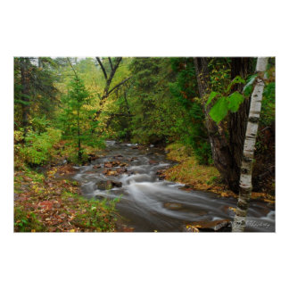 Stream in Duluth Woods Poster