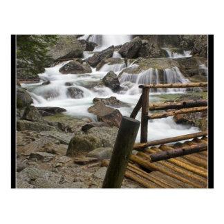 Stream In High Tatras In Slovakia Postcard