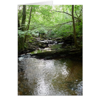 """""""Stream in Northumberland Woods"""" (2) Greeting Card"""
