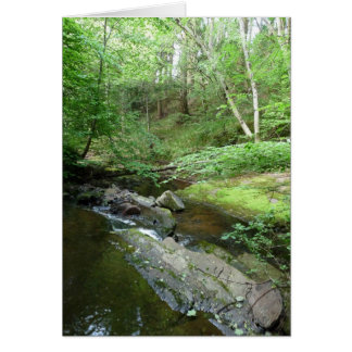 """""""Stream in Northumberland Woods"""" (3) Card"""