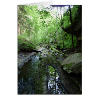 """""""Stream in Northumberland Woods"""" (5) Card"""