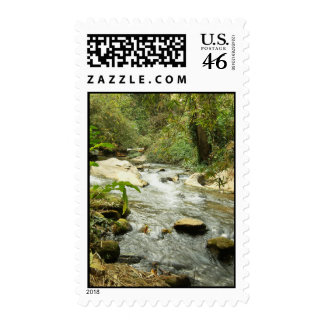 Stream In The Hills Postage Stamp