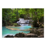 Stream in the Tropical Forest Poster