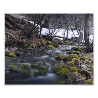 Stream in Third Fork, ID(Long Shutter) - #2175 Photo Print
