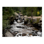 Stream in Wild Basin Postcards