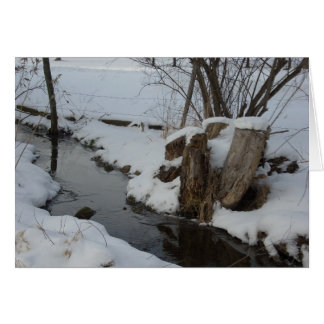 Stream in Winter Card