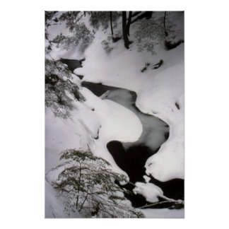 Stream in Winter Poster