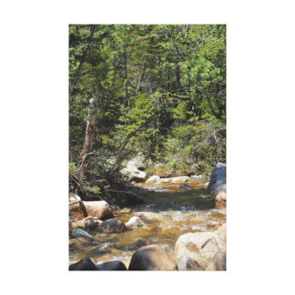 Stream on Mount Hancock New Hampshire Canvas Print