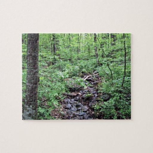 Stream running through forest jigsaw puzzles
