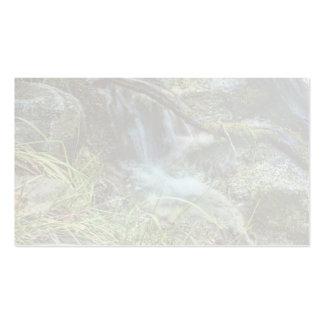 Stream Waterfall Standard Business Card