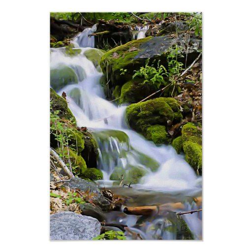 Stream With Moss - Long Exposure Poster