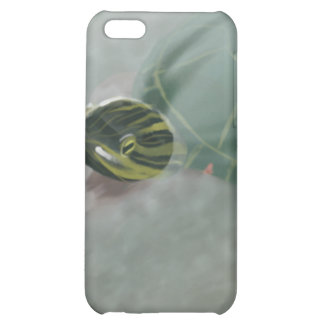 Stream with Turtles and Fish Cover For iPhone 5C