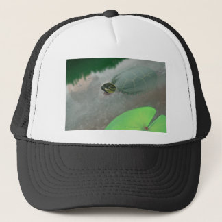 Stream with Turtles and Fish Trucker Hat