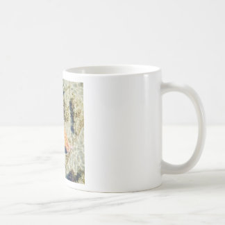 Streaming Starfish Coffee Mug