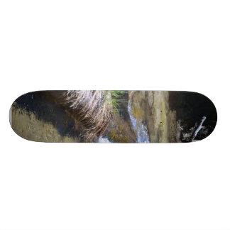 Streams Logs Water Riverbanks Skateboards