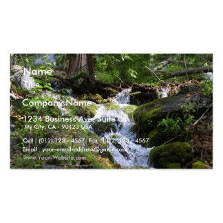 Streams Moss Water Forests Rocks Business Card