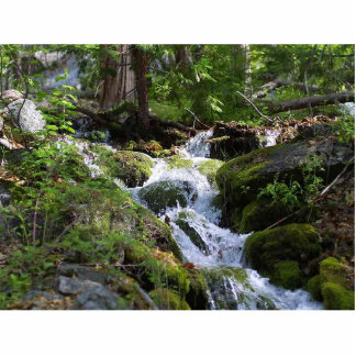 Streams Moss Water Forests Rocks Standing Photo Sculpture